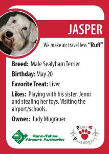Jasper Trading Card