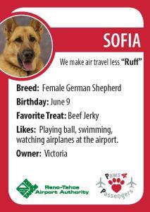 Sofia Trading Card