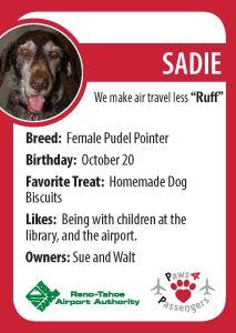Sadie Trading Card