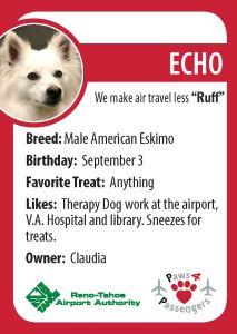 Echo Trading Card