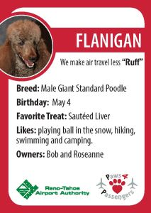Flanigan Trading Card