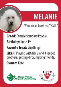 Melanie Trading Card