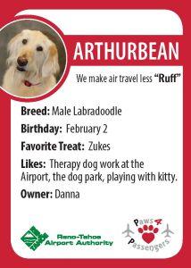 Arthurbean Trading Card